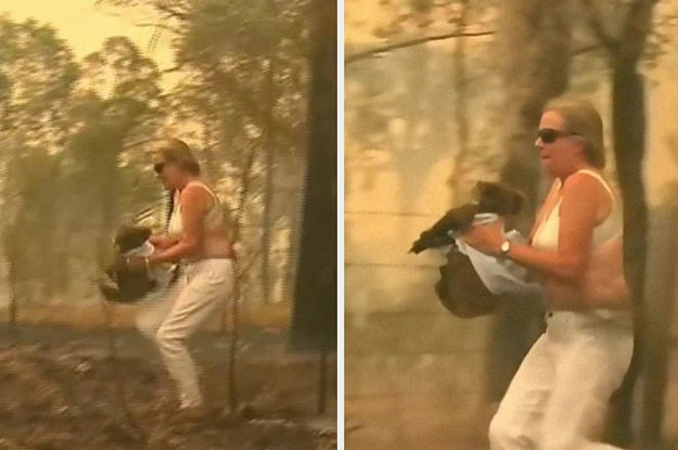 This Woman Who Used Her Own Shirt To Save A Koala From The Australian Bushfires Is A True Hero