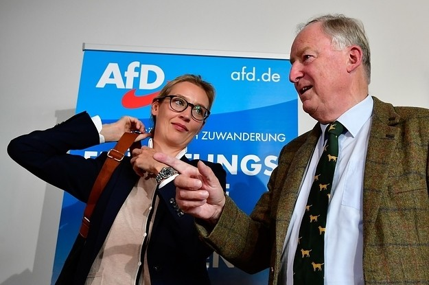 The AfD Has Just Won The Biggest Vote Share For A German Far-Right Party Since The Nazis