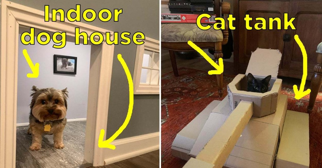 20 Suuuper Creative Things People Have Made For Their Pets While In Quarantine