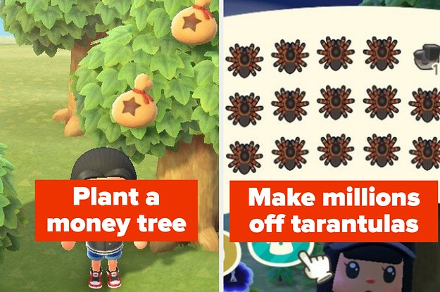 "14 ""Animal Crossing: New Horizons"" Tips, Tricks, And Hacks"