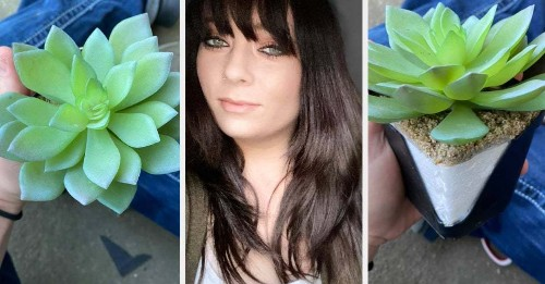 This Woman Watered A Fake Plant For Two Years Thinking It Was Real And The Story Is Hilarious