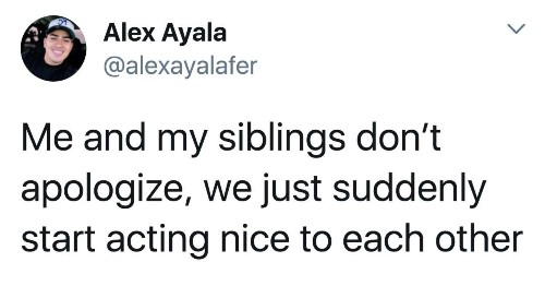 22 Pictures People Without Siblings Will Never, Ever Understand