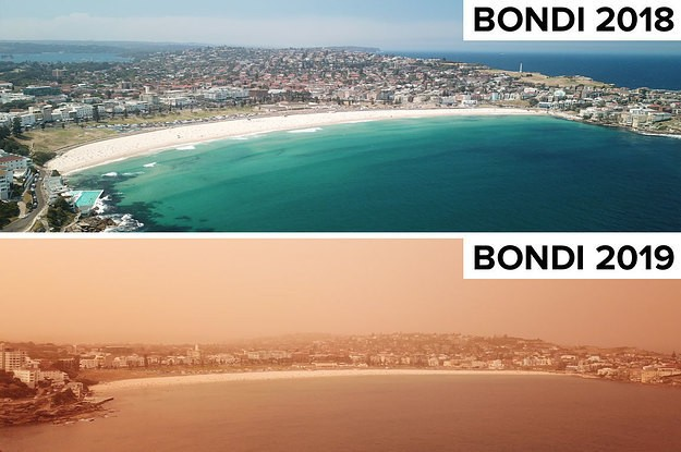 8 Before And Afters That Capture The Effect Of The Aussie Bushfires This Summer