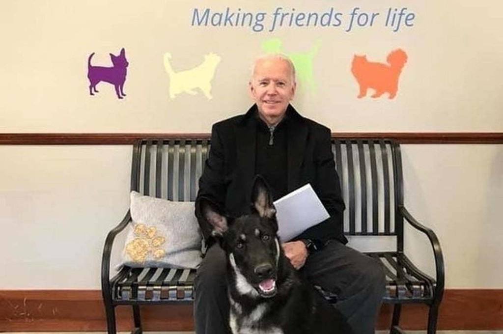 Joe Biden Hurt His Ankle While Playing With His Dog Major