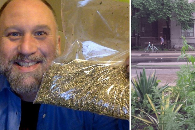 This Guy Is The Reason Pot Plants Are Popping Up In Public Places Across Canada