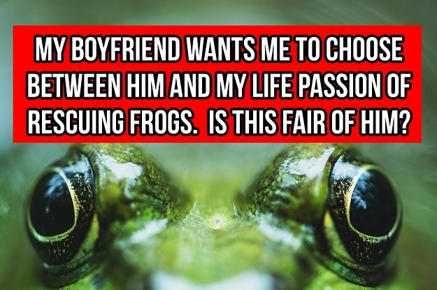 A Girl's Boyfriend Asked Her To Choose Between Him And Her Frogs, And People Sounded The Heck Off