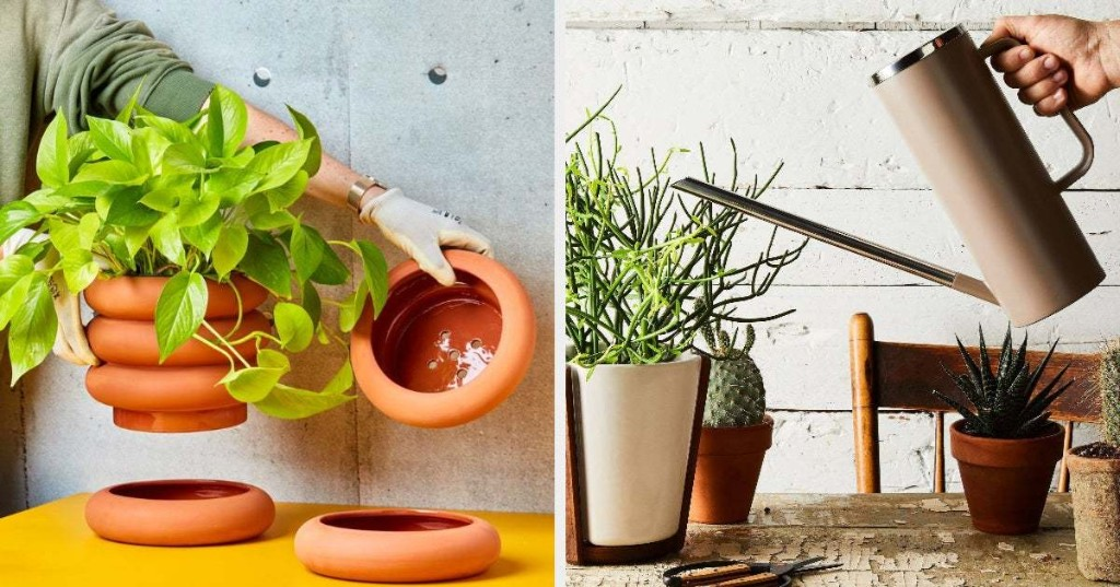 17 Products To Level Up Your Plant Game