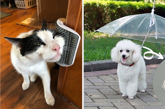 35 Problem-Solving Products Pet Owners Actually Swear By