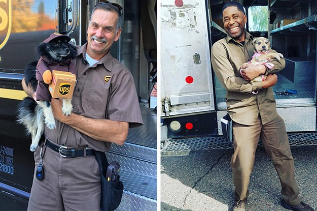 21 Photos Of Dogs And Delivery Drivers That Are Pawsitively Heartwarming