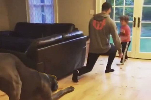 If This Great Dane Learning To Workout Doesn't Inspire You Then Nothing Will