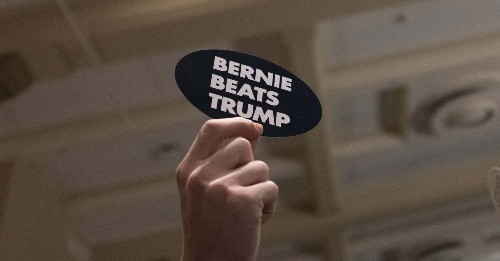 """""""I Would Vote For My Dead Cat Over Trump"""": Even Moderate Democrats Say They'd Vote For Bernie Sanders If He's The Nominee"""