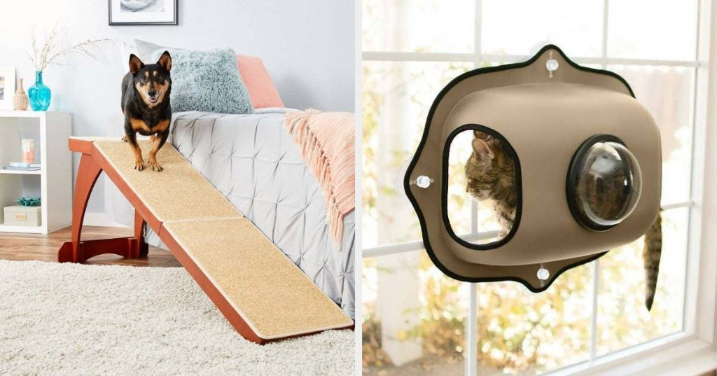 21 Things From Chewy Pet Owners Will Probably Wish They'd Bought Years Ago