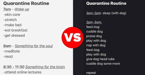 """16 """"Quarantine Routine"""" Tweets That Are Making Me Laugh Out Loud From My Unmade Bed"""