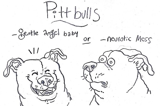 Any Dog Owner Will Relate To These Hilariously Accurate Breed Descriptions