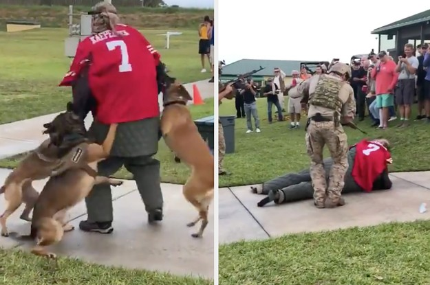 The US Navy Is Investigating A Video Showing Military Dogs Attacking A Man In A Colin Kaepernick Jersey During A Demonstration