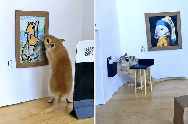 This Couple Made A Tiny Art Gallery For Their Gerbils And It Is Perfection