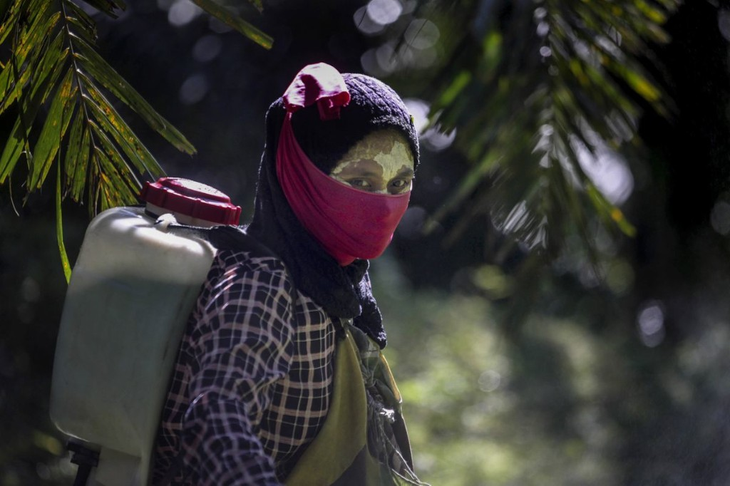 Rape, reproductive health hazards are common in palm oil fields linked to top beauty brands and everyday household products