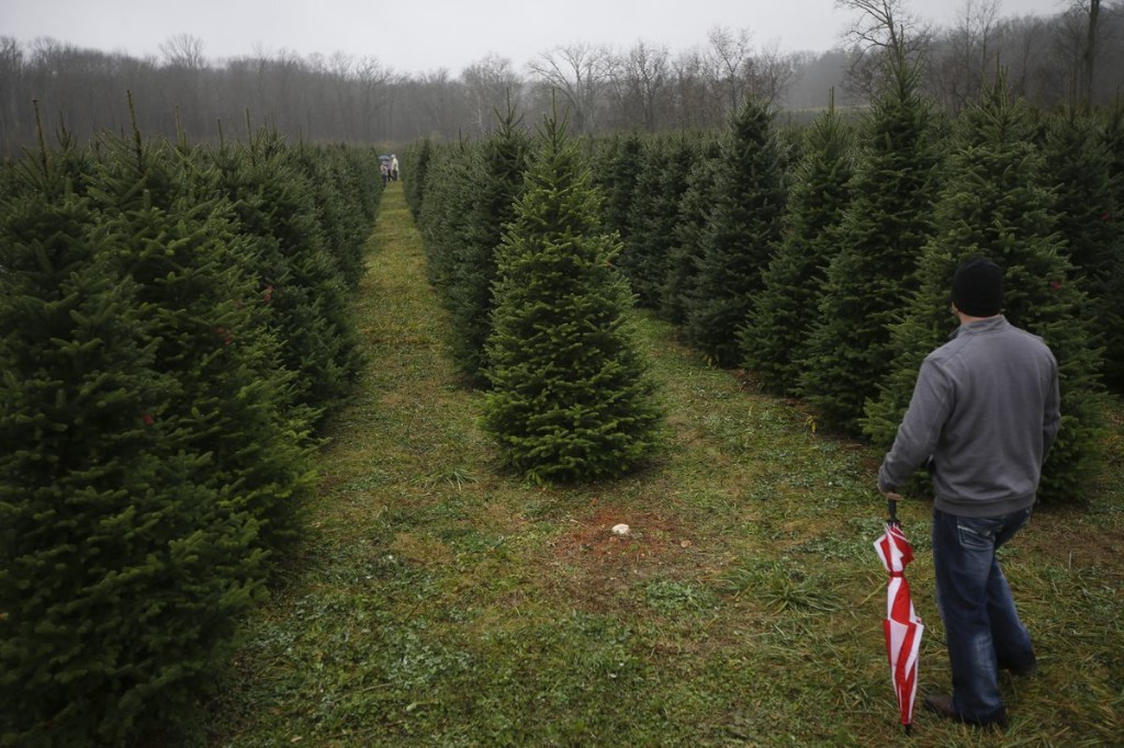 Rethinking the holidays: Traditions, change are on the table