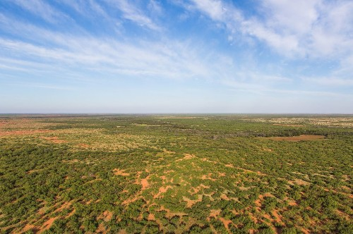800-square-mile Texas ranch for sale; all yours for $725 million