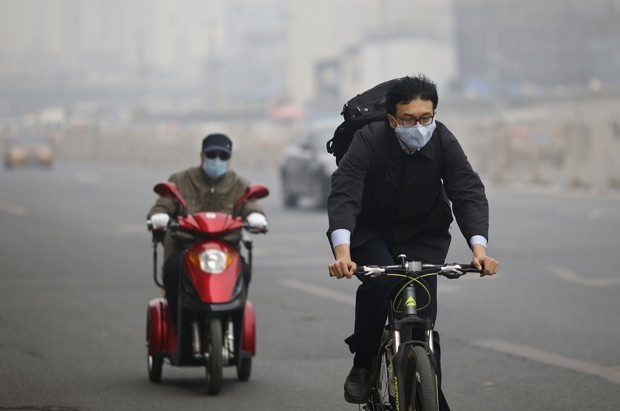 How to Breathe Easy in Polluted Cities