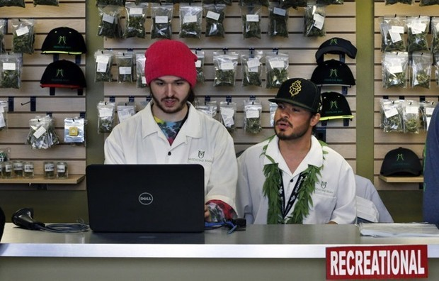 The Pot Industry Is Growing a Startup Culture