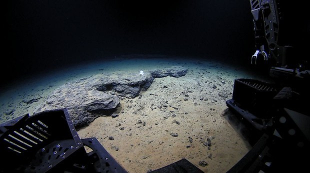 The Surreal Animal and Human Sounds of the Mariana Trench