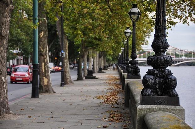Londoners Living Near Street Trees Get Prescribed Fewer Antidepressants