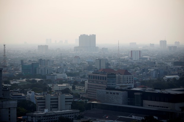 Why Indonesia's Capital Move Has Environmentalists Worried