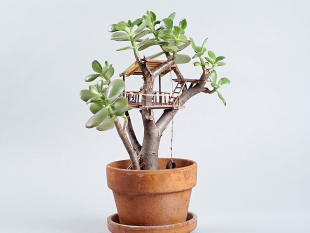 Tiny Treehouses for Your Houseplants