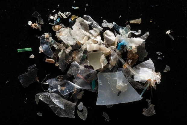 The Chesapeake Bay Is Turning Into Plastic Soup
