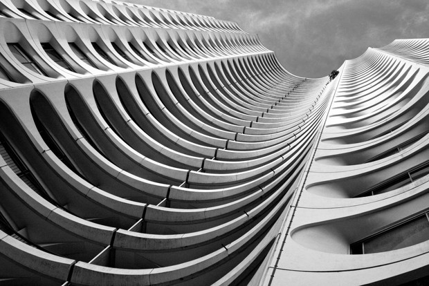 A Skyscraper Made of Bones: How Biomimicry Could Shape the Cities of the Future