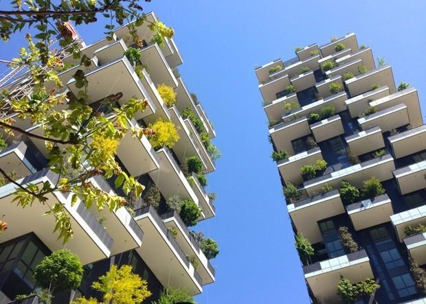 Are 'Treescrapers' the Future of Dense Urban Living?
