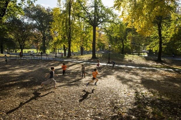 Neighborhood Parks Are Barely Reaching Their Audience Potential
