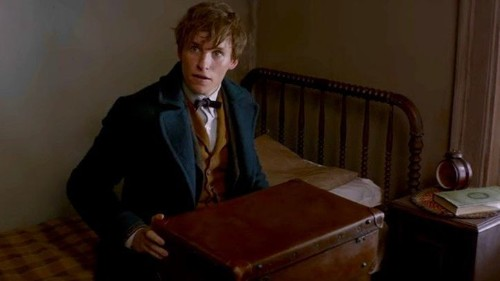 'Fantastic Beasts and Where to Find Them' estrenará secuela en 2018