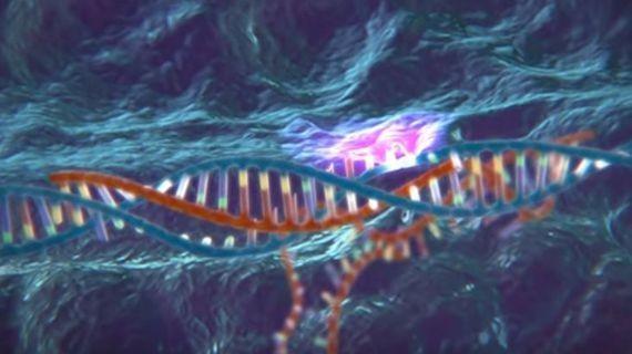 Nuevos 'lápices' para la edición de genes reescriben el ADN para deshacerse de los males