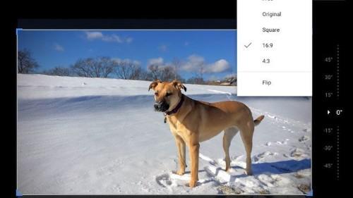 Cómo editar y cortar imágenes más rápidamente con Google Photos
