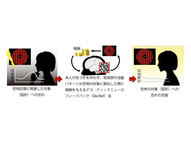 つらい記憶を無意識のうちに消去する技術--NICT、ATRらが開発
