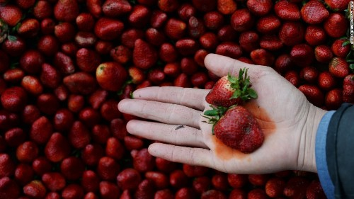 The 'Dirty Dozen': Group lists produce with the most pesticides