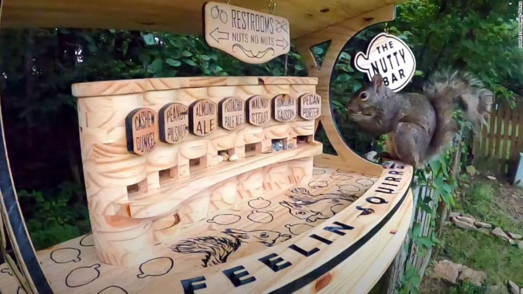 An Ohio man built a backyard squirrel bar with seven varieties of nuts on tap