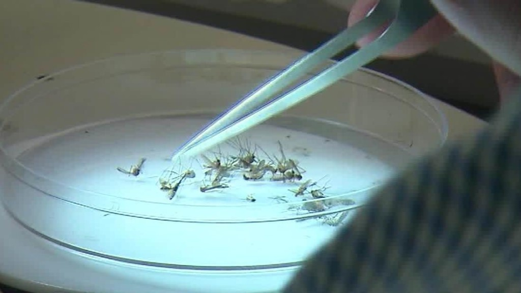 Michiganders urged to stay indoors as officials race to stop the spread of a dangerous mosquito-borne disease