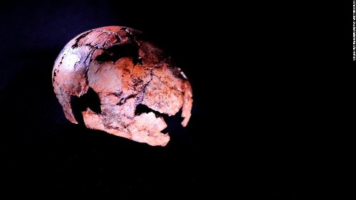 Ancient humans are having a moment. Here are the fascinating new things we've learned this week about our ancestors