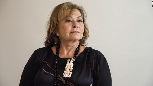 Roseanne Barr mulls her return to TV