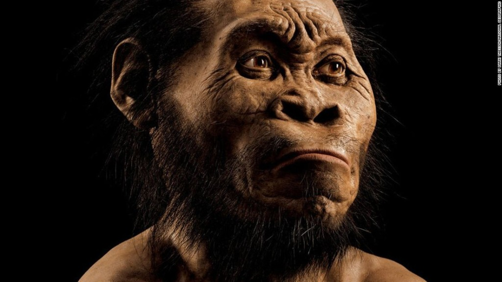 Homo naledi: New species of human ancestor discovered - CNN