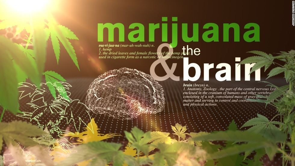 Cannabis  - Magazine cover