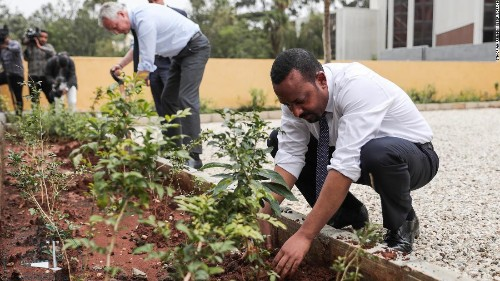Ethiopia plants more than 350 million trees in 12 hours