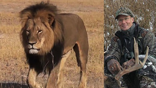 Two Zimbabweans freed on bail in death of Cecil the lion