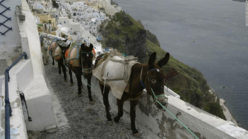 Greece bans 'overweight' tourists from riding donkeys