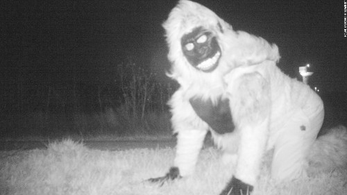 Things get weird when police set up camera at park