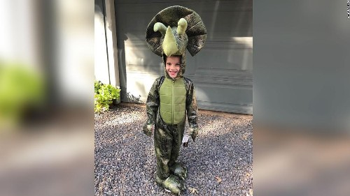 This 4-year-old boy lost his prized dinosaur collection in the Camp Fire. Strangers are helping him create a new one