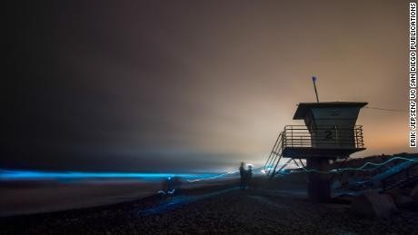 Bioluminescent critters bathe Southern California surf in an aqua glow